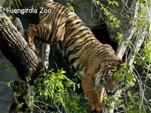 Fuengirola-Zoo