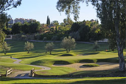 Los-Naranjos-Golf-Club