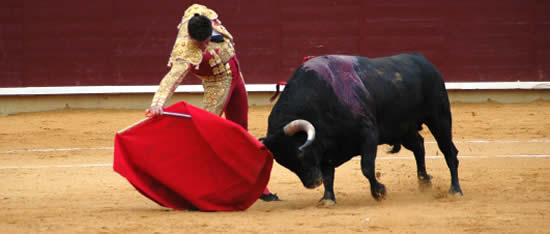 Bullfighting in Spain - Marbella Guide